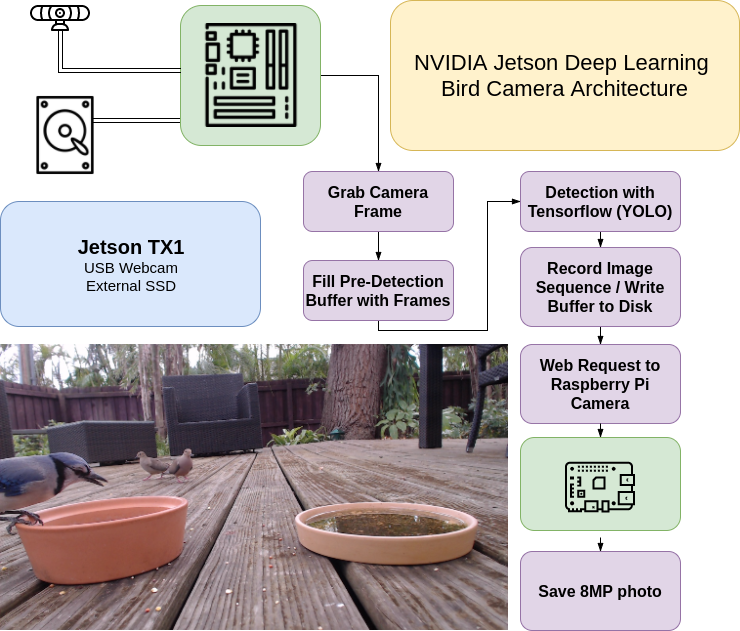 Designing A Deep Learning Bird Camera Platform - Make Art